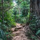 Лам Нам Кок - тропинка сквозь джунгли